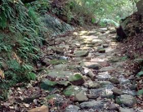 歴史街道「姶良の三坂」 <br />~江戸時代からの石畳を歩く~<br /> その1 白銀坂