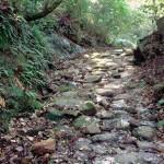 白銀坂 (姶良の三坂)