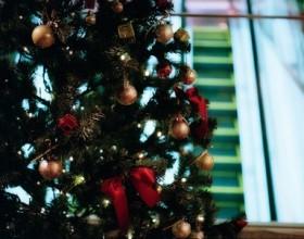 大人のクリスマス・パーティーお問い合わせ先