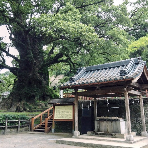 Smartphone Stamp Rally in Samurai Village in Kamo <br />(Kamo-fumoto Sumaho de Stamp Rally / <br />蒲生麓スマホdeスタンプラリー)