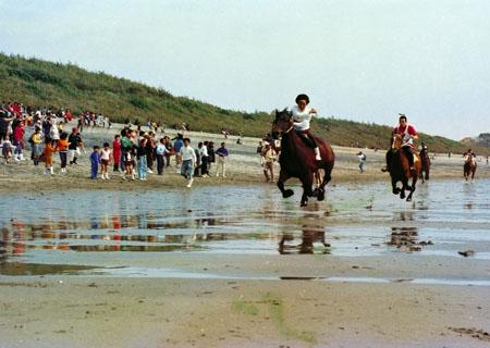 KUSHIKINO BEACH HORSE RACE 2014 (串木野浜競馬 2014)
