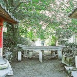 Kurokami Buried Shrine Gate