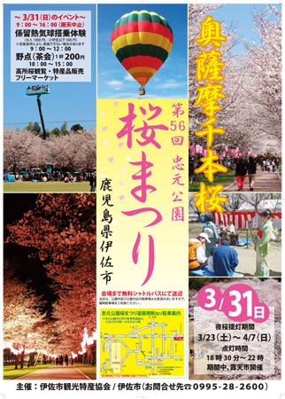 [お花見情報] 忠元公園桜まつり