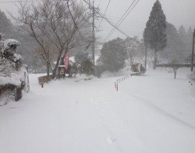 All Kagoshima Transport is Affected by The Snow.