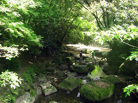 慈眼寺公園