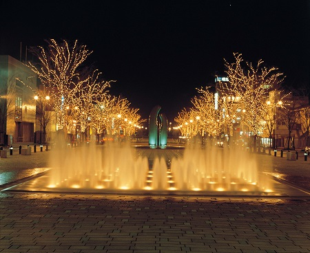 [Illumination 2014] Minato Odori Park