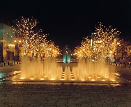 Minato Odori Park (みなと大通り公園) [Illumination 2017 ~ 2018]