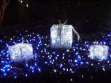 KICフォーマル・クリスマスパーティー(サクラ島大学共催)にお越しください!